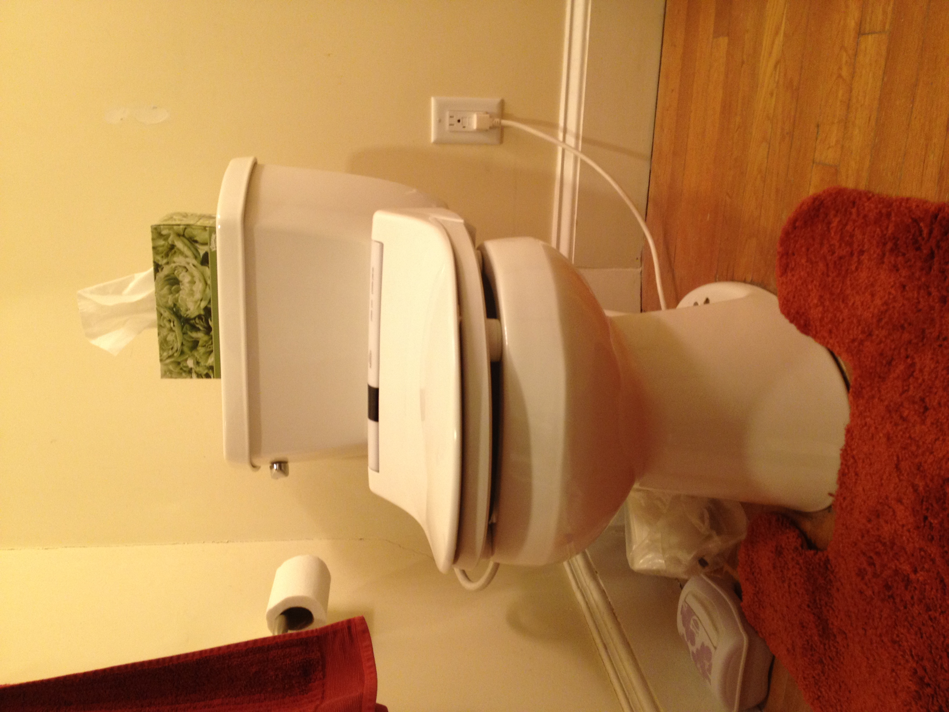 Bathroom Sink Outlet : New bathroom electrical outlet (one of two). Previously the bidet ...
